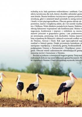 Gmina Kołobrzeg - Dzieje i Atrakcje Turystyczne strona 9